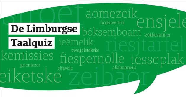 Finale taalquiz: 'jonkies' in top-3,  quotum vrouwen net niet gehaald