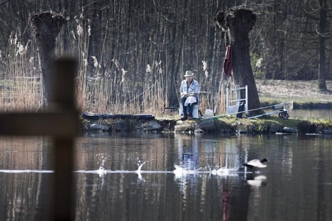 Gemeente Sittard-Geleen wil alle vissen uit Kweekvijver laten halen