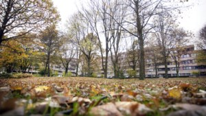 Opnamestop bij twee tehuizen Mosae Zorggroep in Maastricht na bezoek inspectie