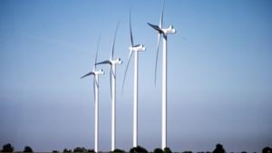 'FvD-gedeputeerde Burlet zal geen windmolens tegenhouden'