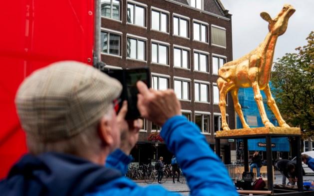 Gouden Kalf voor Tegelse regisseur Rob Lücker