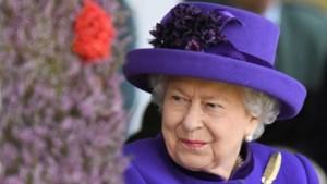 Queen Elizabeth start zoektocht naar paardenverzorger