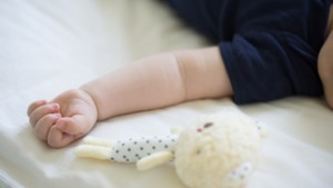 Gratis workshop 'Voorlezen aan baby's' in de bieb