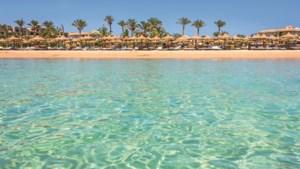 5 redenen voor een winterzonvakantie naar Egypte