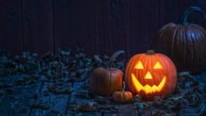 Halloweenfeest bij scouting in Margraten