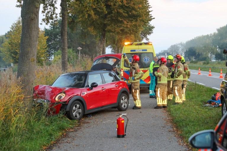 Auto botst tegen boom op N266 Nederweert: bestuurster gewond naar ziekenhuis