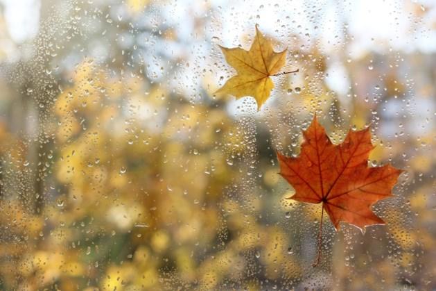 Herfst tot nu toe natter dan normaal