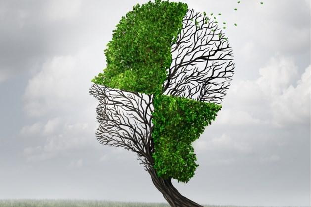 Alzheimercafé Leudal