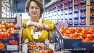 Venloos bedrijf brengt truckladingen Nederlandse groenten naar Italië: 'Ze zijn dol op onze tomaten'