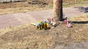 Meisje (17) overleefde ongeval in Horst niet: taakstraf geëist tijdens emotionele rechtszaak