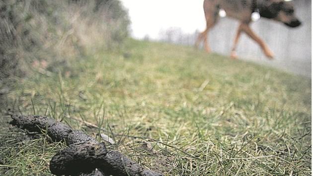 Beek stopt met gratis verstrekken hondenpoepzakjes