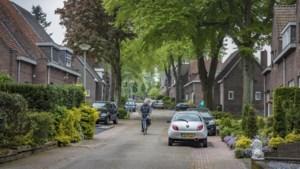 Brunssum helpt particulieren met aanpak beschermde bomen in mijnwerkerswijken