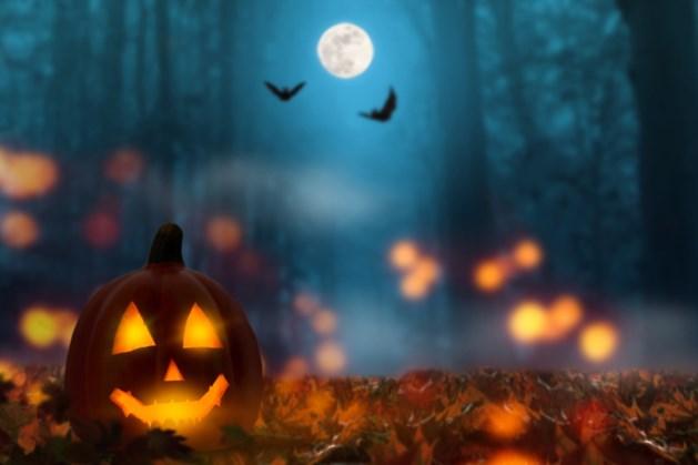 Griezelen tijdens halloweentocht door Wijlre