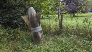 Limburgs Museum zoekt oorlogsschatten van bezoekers