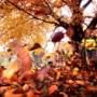 Gezond de herfst door met Ayurveda