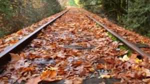 Vallende herfstbladeren hinderen treinen en NS steeds minder