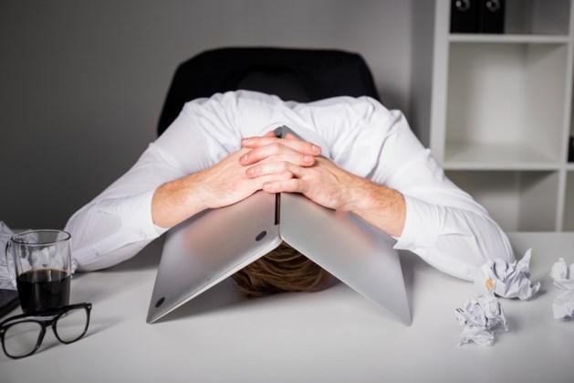 'Meerderheid ondernemers mist steun Den Haag'