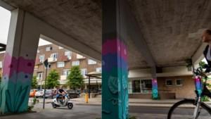 Toch plek voor maatschappelijke functies in nieuwbouw in Maastrichtse wijk Pottenberg