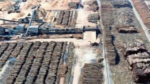 'Biomassa is niet duurzaam, maar doodt mensen'