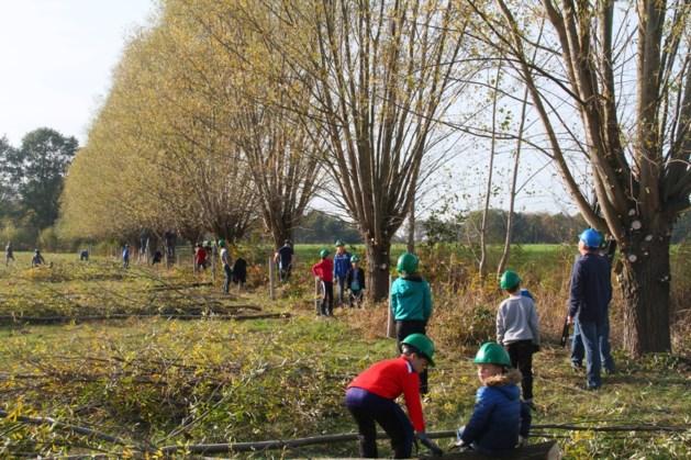 Natuurwerkdag in de regio: help de natuur een handje vooruit