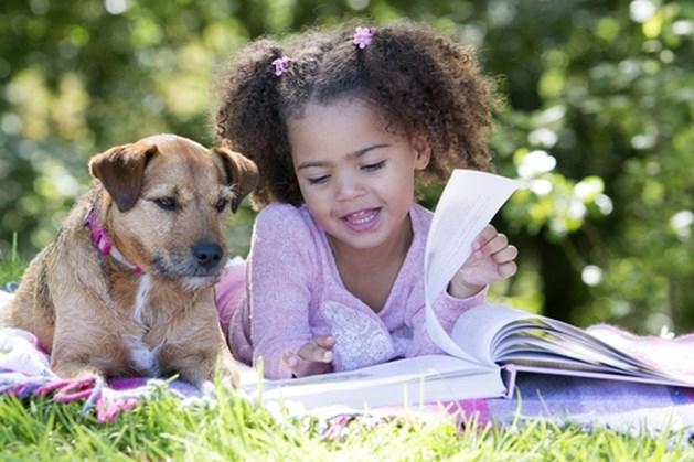 Kinderen kunnen voorlezen aan Nena de hond in bibliotheken Venray en Horst