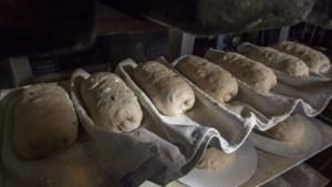 Het Bakkes Beek stookt de oven weer op
