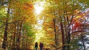 Pittige herfstwandeling rond Kornelimünster