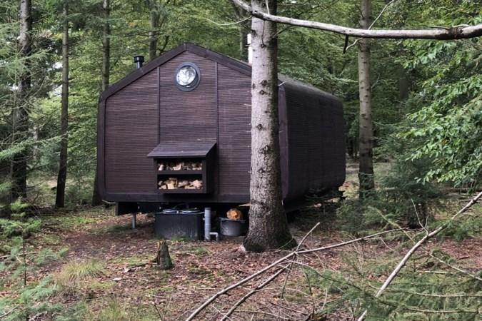 Logeer eens moederziel alleen in een cabin in een donker bos: 'Is daar iemand?'