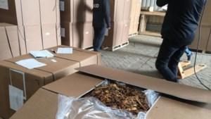 Illegale sigaretten uit Limburg gaan vooral het Kanaal over
