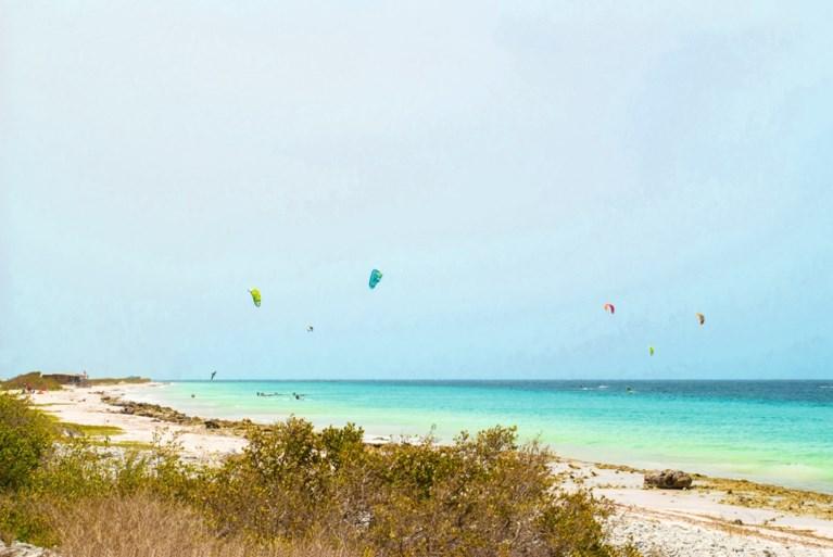 Heerlense Dave woont op Bonaire: 'Hier leeft iedereen vreedzaam naast elkaar'