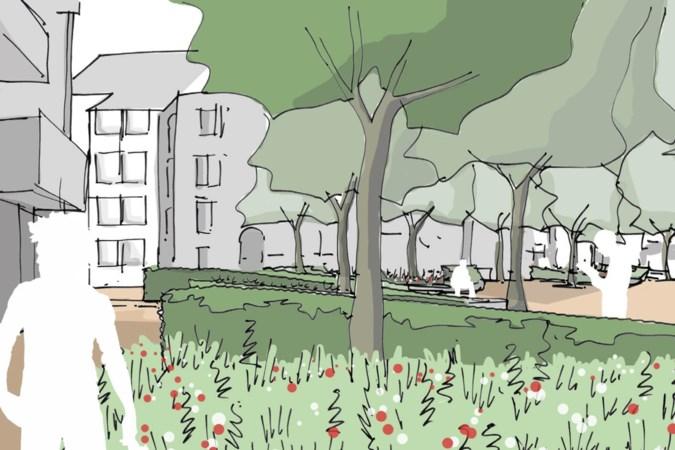 Venray: plan voor meer groen op 'troosteloze' Gouden Leeuwplein