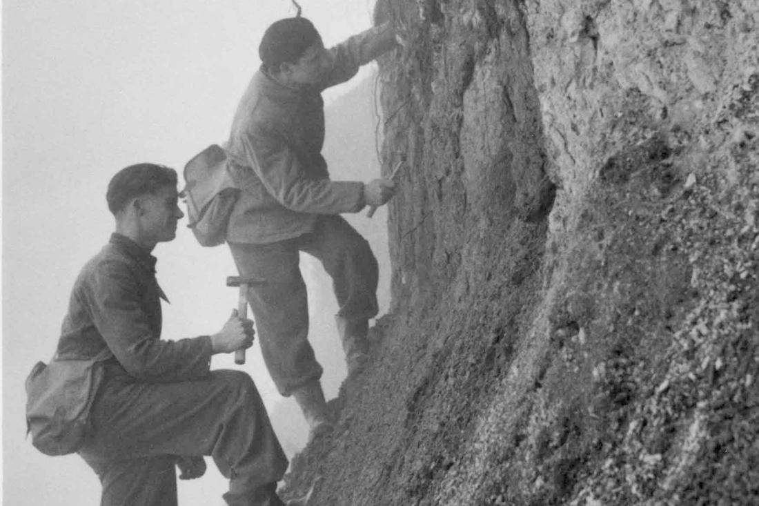 Van mosasaurus tot maaskei: Limburgse geologen blijven grave... - De Limburger