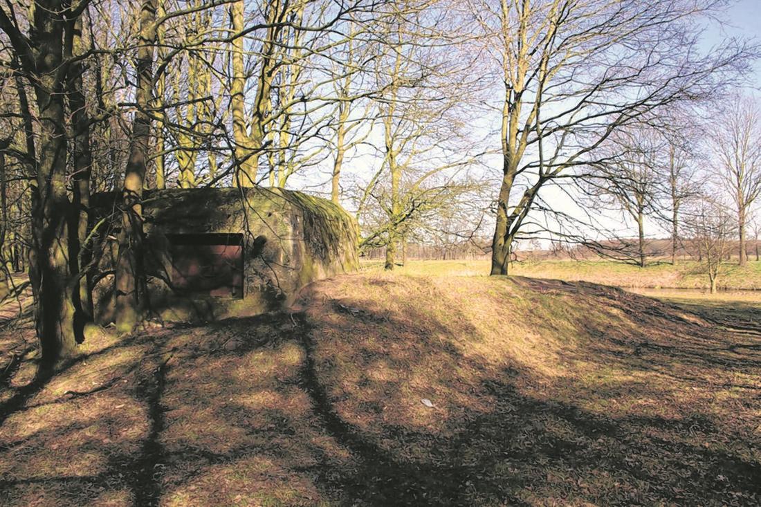 Bevrijders terug op de Vossenberg in Meijel - De Limburger