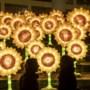Van groot spektakel tot serene maanstralen: lichtkunstfestival Glow Eindhoven heeft het allemaal