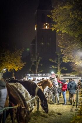 Paardenmarkt in Lottum gaat ook op de 11e van de 11e gewoon door