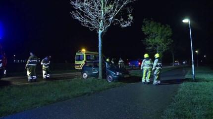 Video: Auto komt tegen boom tot stilstand, bestuurder gewond