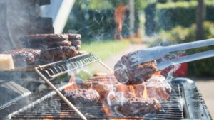 Winterwandeling en barbecue in Gronsveld