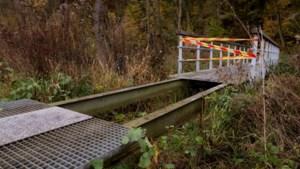 Diefstal van metalen vlonders uit wandelbrug in Elsloo hakt er financieel in bij Staatsbosbeheer