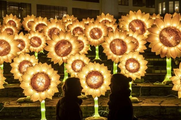 770.000 bezoekers lichtfestival GLOW in lichtstad