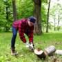 IVN Beekdaelen zoekt houthakkers