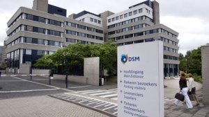 Voeding trekt de kar voor DSM