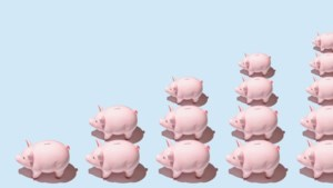Nederland weer stukje rijker, Mook en Eijsden-Margraten aan kop in Limburg