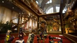 Meer dan 200 kerststallen te zien in Klooster Wittem