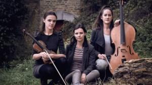 Internationaal Chekhov Trio treedt op in Mookse kerk