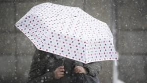 Eerste sneeuwvlokken van het seizoen gevallen in Limburg