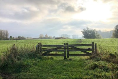 Wandelen: Rode Beek-route is een grote geluksplek