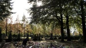 Marokkanen willen deel van begraafplaats in Venlo kopen