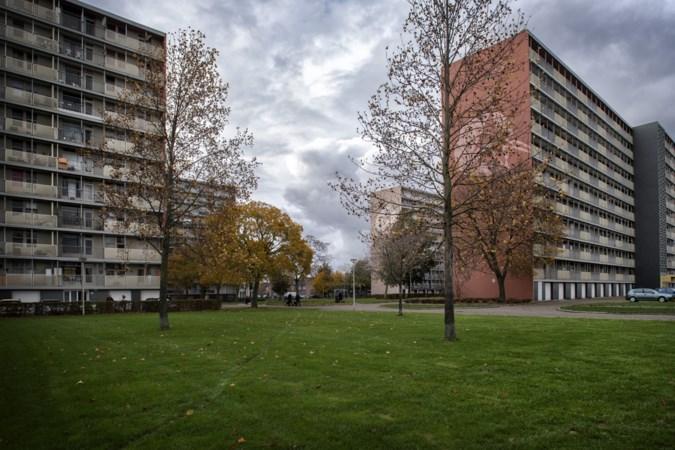 Stenen stapelen in Parkstad is iets anders dan sociale achterstanden aanpakken