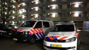 Zwaar bewapende Limburgse hennepdieven: 'We wilden Safranti niet doden'