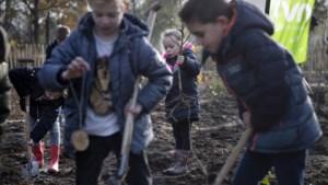 Kinderen planten minibos in Weert